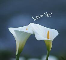 Love Ya! by Yuval Levin