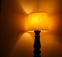 just a lampshade ... by photogenic