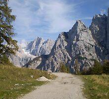 Vrsic Pass, Slovenia by oscars