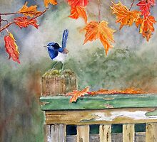 Sitting on the fence by Denise Martin