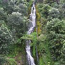 Napier Waterfall by Brittany Schneider