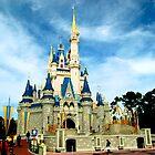 The Magic Kingdom (Orlando, FL) by Tim Ray