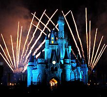 Magic Kingdom Fireworks by Tim Ray