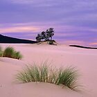 Barracoota Dunes by Travis Easton