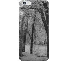 Monochrome Glade iPhone Case/Skin