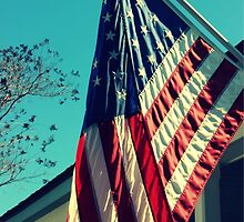 Stars and Stripes by Christina  Sutton