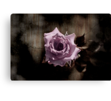 Rusted Rose Canvas Print