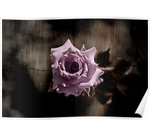 Rusted Rose Poster