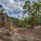 Gorge in the Gorge by Jan Pudney
