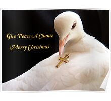 Give Peace A Chance - Merry Christmas - White Dove Poster