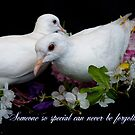 Someone So Special Can Never Be Forgotten - White Doves - NZ by AndreaEL