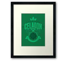 Celadon Gym Framed Print