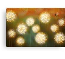 bee and the blowballs Canvas Print