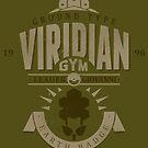 Viridian Gym by Azafran