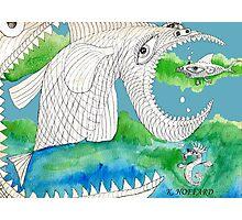 Big Fish Little Fish Photographic Print