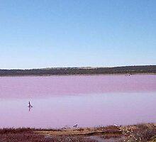 Pink Lake by georgieboy98