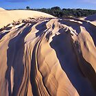 Cape Howe Dunes by Travis Easton