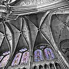 Reims Cathedral Ceiling by Victor Pugatschew