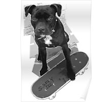 SK8 Staffy Dog black and white Poster
