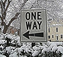 One Way by Tammy Soulliere