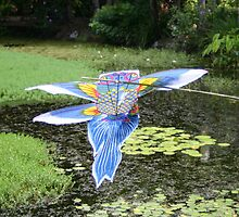 Flying Fish Kite by Kate Lawrence