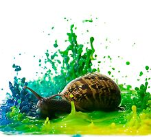 Snail in a paint Sculpture  by PhotoStock-Isra