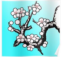 White Sakura Cherry Blossom Vector Design Poster