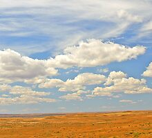 Dakota Sky by Bill Morgenstern
