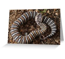 Scaleless Greeting Card