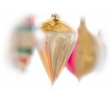Ornamental by Robert Meyer