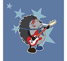 Ziggy plays guitar Photographic Print