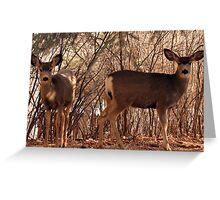 Natures neighbors Greeting Card