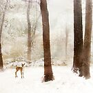 Winter Whimsy by Jessica Jenney