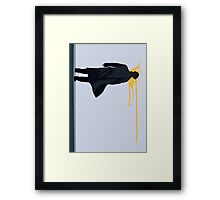 The Reichenbach Hero Framed Print