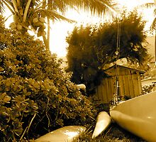 Surf sail and sun by pbeltz