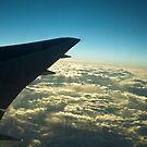 Flying by Rebecka Wärja