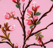 Cherry Blossoms from Amphai Sticker