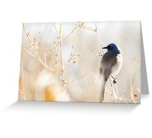 Scrub Jay in Weeds Greeting Card