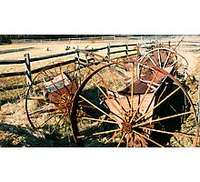 #257     Wheels, Fences, and Sheep Photographic Print