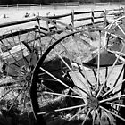 #258      Wheels, Fences, and Sheep (B&W) by MyInnereyeMike