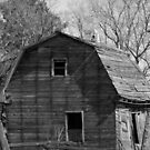 Old Homestead 1800's by Madeline M  Allen