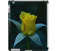 Yellow Rose Waking Up To the World iPad Case/Skin