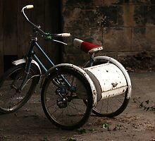 Tricycle by jayt47