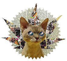 Mista Cat Eyes by Vintagee