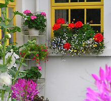 Cottage Window and Flowers by Cathy Klima