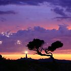 Rottnest Island Sunset, Western Australia by Jennifer and Paul Cave