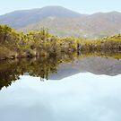 Melaleuca Creek Reflections by Carole-Anne