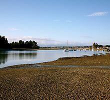 Mapua Inlet, Nelson  - Dawn by Lisa Wilson