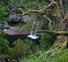 Waterfall, Cradle Mountain by NickMonk