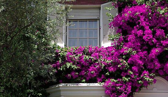 Window full of flowers  by fuxart